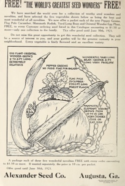 Historical Seed Catalogs: Alexander's garden and field seed catalogue (1921) - 19 in a series
