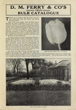 Historical Seed Catalogs: Bulbs and seeds : Autumn 1913 by D.M. Ferry & Co - 25 in a series
