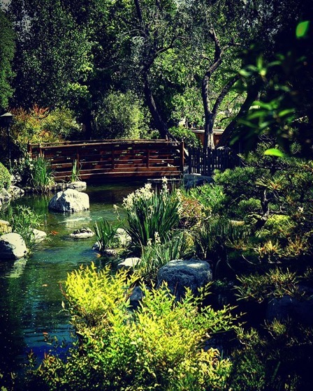 Japanese Garden, Cal Poly Pomona 2 via My Instagram