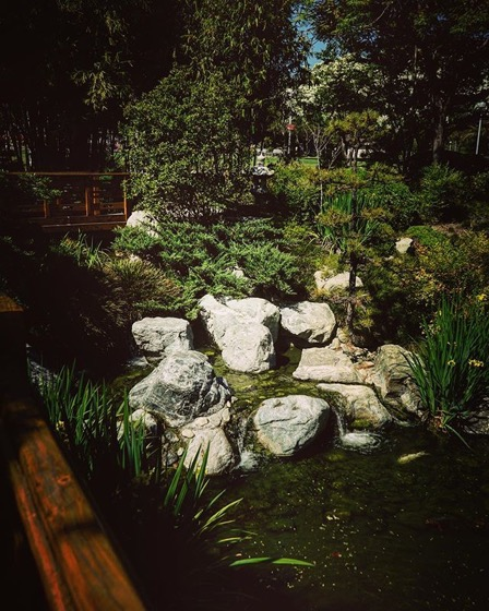 Japanese Garden 4, Cal Poly Pomona via My Instagram