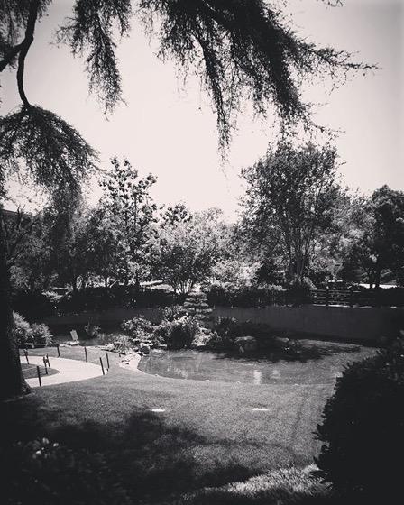 Japanese Garden 5, Cal Poly Pomona