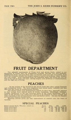 Historical Seed Catalogs: The orchard, the garden, the landscape : catalog of The John S. Kerr Nursery Company (1918) - 27 in a series