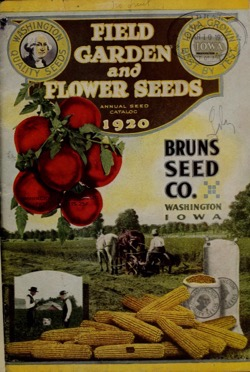 Historical Seed Catalogs: Field, Garden And Flower Seeds : Annual Seed Catalog, The Bruns Seed Co.(1920) - 37 in a series