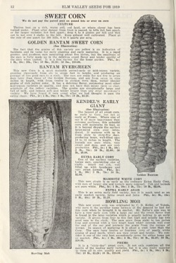 Historical Seed Catalogs: Elm Valley Seed Gardens/Zack Davis Company (1919) - 40 in a series