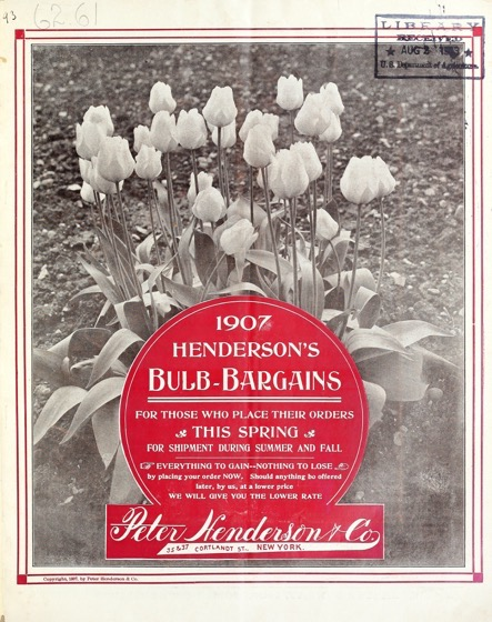 Historical Seed Catalogs: Henderson's bulb-bargains (1907) - 39 in a series
