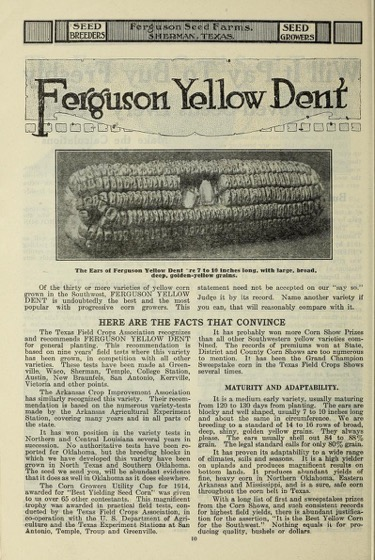 Historical Seed Catalogs: Ferguson Seed Farms breed and grow pedigreed field seeds (1917) - 48 in a series