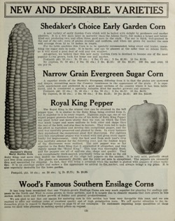 Historical Seed Catalogs: Wood's seeds Catalog (1919) - 47 in a series