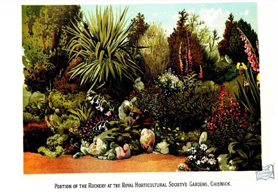 Historical Garden Books - 58 in a series - Cassell's popular gardening (1884) by David Taylor Fish