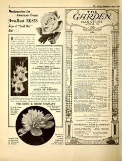 Historical Garden Books - 57 in a series - The Garden magazine, April 1920