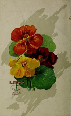 Historical Seed Catalogs: Illustrated and descriptive seed catalogue and price list by E.J. Bowen (1901) - 51 in a series