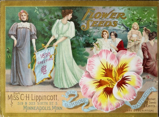 Historical Seed Catalogs: Flower seeds from Miss C.H. Lippincott (1898) - 50 in a series