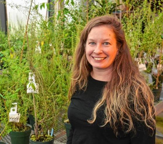 Growing Wild: Gardening as a sensory experience via Daily Hampshire Gazette
