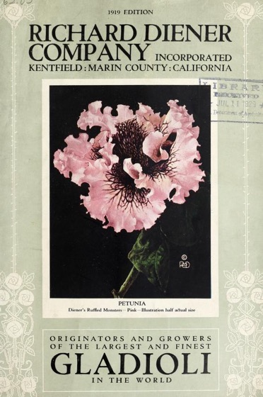 Historical Seed Catalogs: Richard Diener Company Incorporated: originators and growers of the largest and finest gladioli in the world. (1919) - 52 in a series