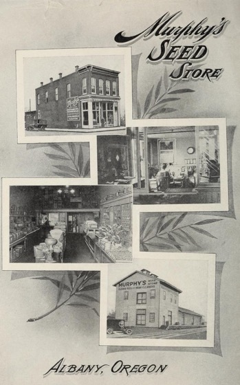 Historical Seed Catalogs: Murphy's Seed Store (1920) - 53 in a series
