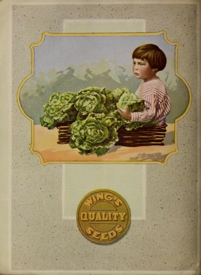 Historical Seed Catalogs: The Wing Seed Co (1918) - 55 in a series