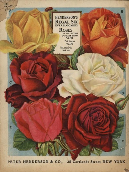 Historical Seed Catalogs: A book for garden lovers: Everything for the garden (1937) by Peter Henderson & Co. - 59 in a series