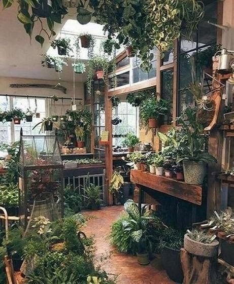 An Amazing Indoor Garden Space