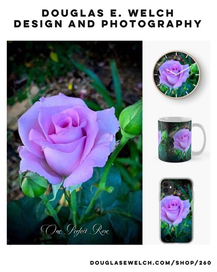 One Perfect Rose Mugs and More From Douglas E. Welch Design and Photography [For Sale]