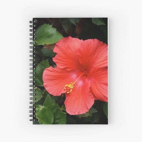 Red Hibiscus Notebook