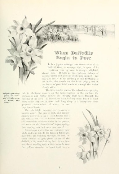 Historical Garden Books - 90 in a series - Flower pictures (1914) by Maude Angell