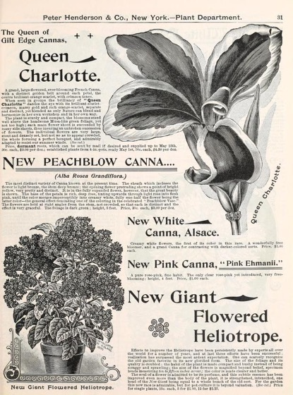 Historical Seed Catalogs - 74 in a series - Seeds, plants, bulbs, tools, fertilizers, insecticides, &c. (1895) by Peter Henderson & Co.