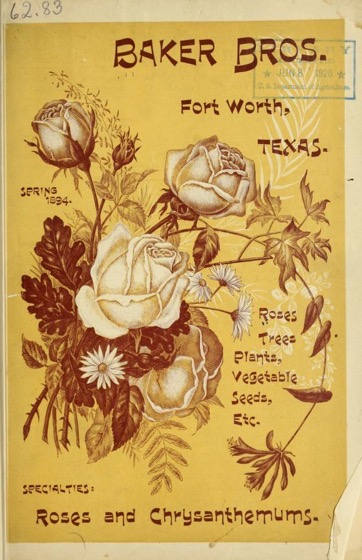 Historical Seed Catalogs - 72 in a series - Baker Bros. Spring 1894 : roses, trees, plants, vegetable seeds, etc.