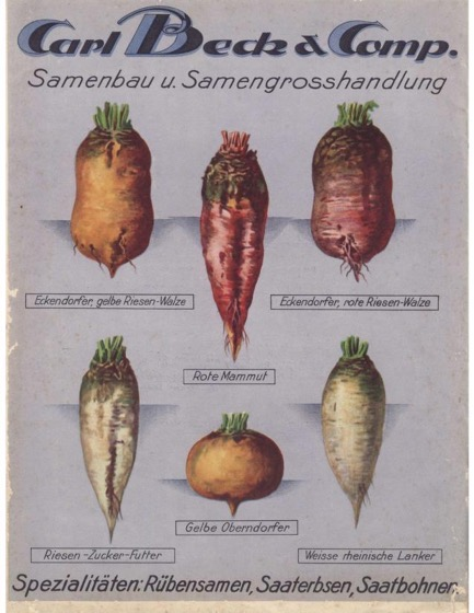 Historical Seed Catalogs - 90 in a series - Carl Beck & Company: Samenpreis- verzeichnis (Seed Price List) (1932)
