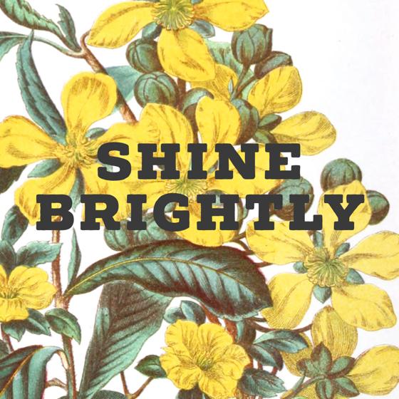 Shine Brightly via Instagram