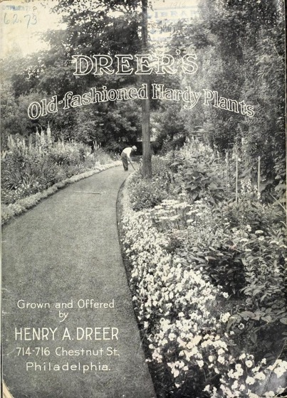 Historical Seed Catalogs - 91 in a series - Dreer's old-fashioned hardy plants (1916)
