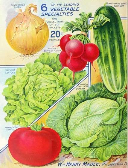 Historical Seed Catalogs - 92 in a series - The Maule Seed Book (1914)