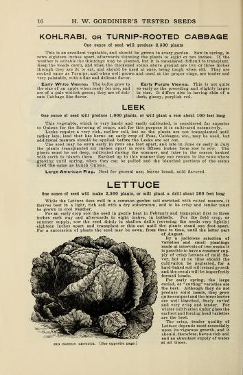 Historical Seed Catalogs - 106 in a series - Bulbs, plants : vegetable and flower seeds(1903) by H.W. Gordinier & Sons
