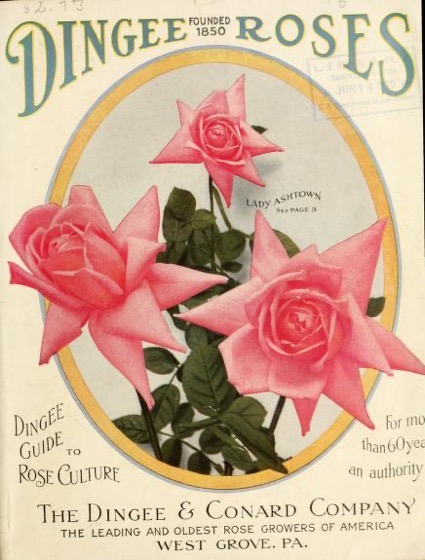 Historical Seed Catalogs - 104 in a series - Dingee guide to rose culture : for more than 60 years an authority (1915)