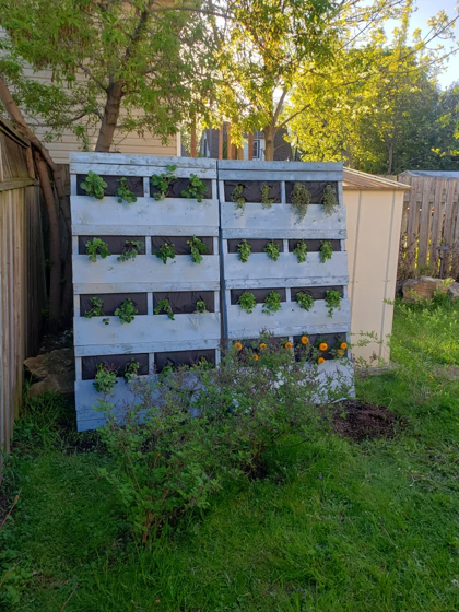 My upright strawberry and herb pallets turned out fantastic! via OfficeDragon1980on Reddit