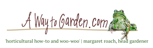 Propagating Deciduous Shrubs From Softwood Cuttings, With Ken Druse via A Way to Garden