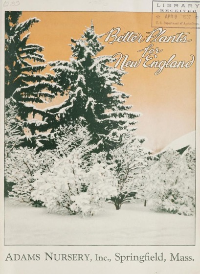 Historical Seed Catalogs - 119 in a series - Better plants for New England / Adams Nursery, Inc. (1937)