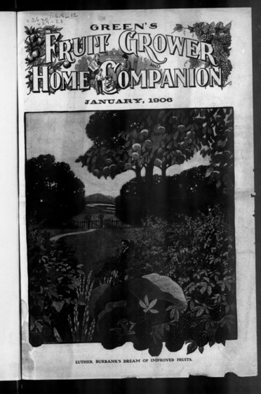 Historical Garden Books - 140 in a series - texts American Fruit Grower  1906-01: Vol 26 Issue 1 (Series)