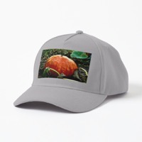 The Great Pumpkin In A Neighbor's Yard via Instagram -- also available on T-Shirts, Hats and More!