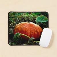 Ur mouse pad flatlay prop square 1000x1000 2