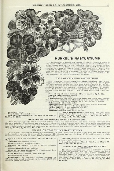Historical Seed Catalogs - 126 in a series - Hunkel's seeds. Spring 1918