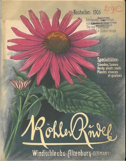 Historical Seed Catalogs - 124 in a series - Koehler & Rudel: Neuheiten (1905)