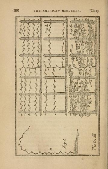 Historical Garden Books - 147 in a series - American Gardener (1819)