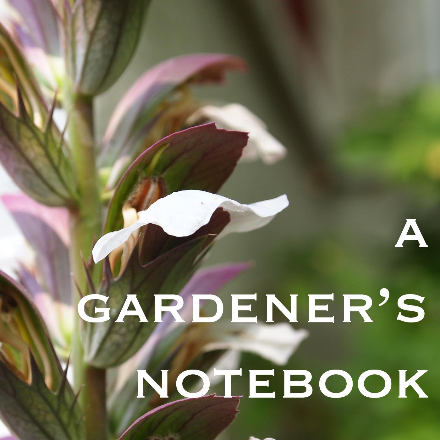 A Gardener's Notebook