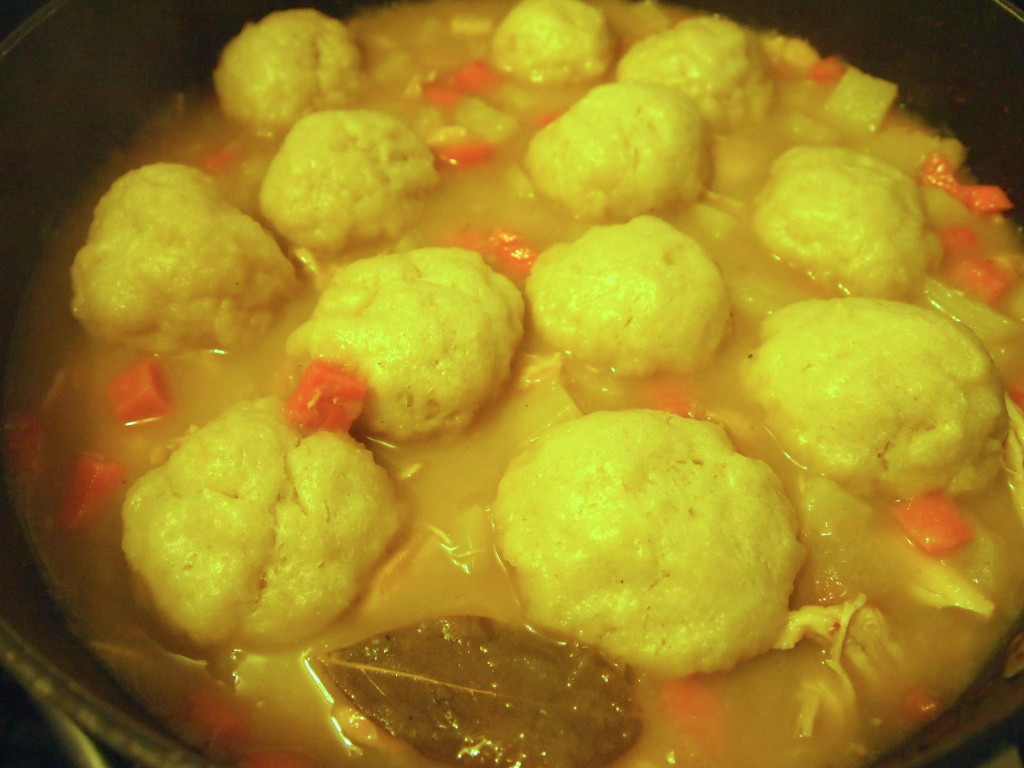 Humble Chicken Stew and Dumplings