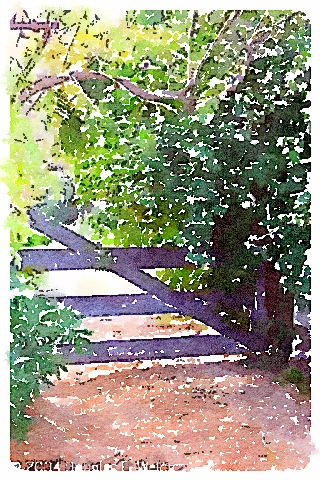 Garden gate watercolor
