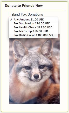 Island fox donate