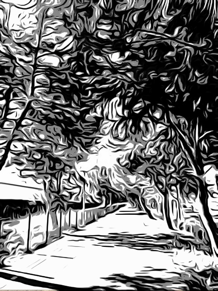Photo: Along the busway via #toonpaint