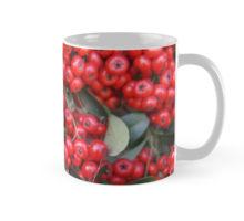 Pyracantha mug