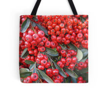 Pyracantha tote
