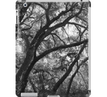 Oak tree ipad