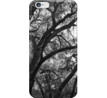 Oak tree iphone